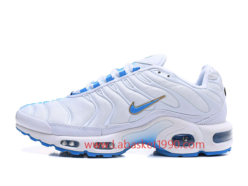 Nike Air Max Elite Chaussures Nike Basketball Pas Cher Pour Homme